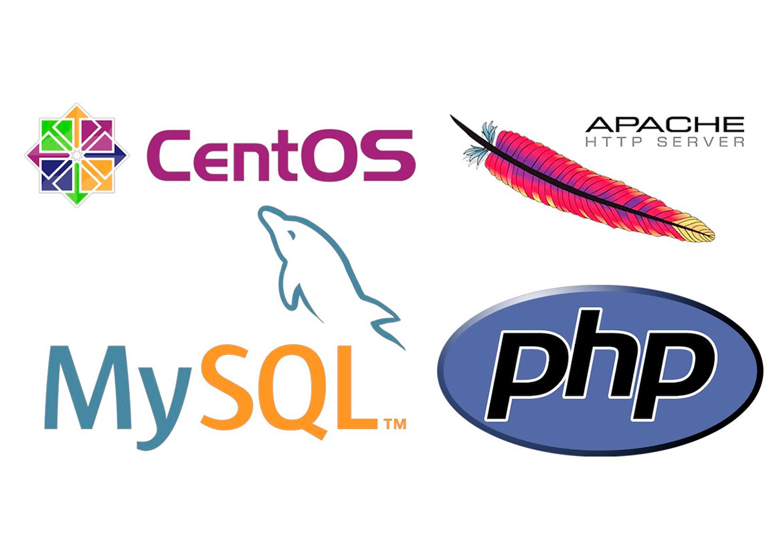 Web – программирование – PHP, MySQL, Apache