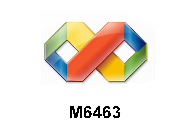 M6463 Visual Studio 2008: ASP.NET 3.5